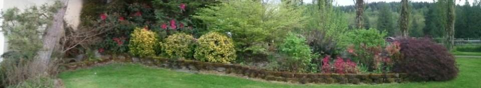 cropped-cropped-cropped-cropped-merged_sprint-garden.jpg