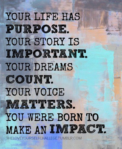 Purpose and Impact
