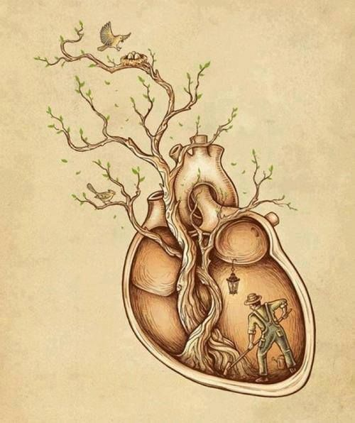 What are you going to allow to take root in your heart?