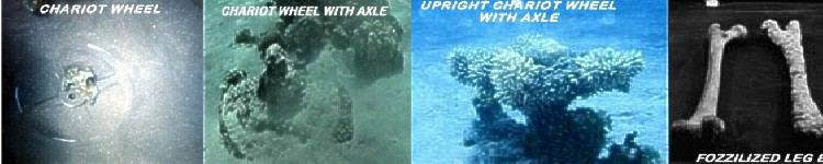 It's amazing how modern technology and research verify and validate the Word of God - Red Sea Combo Wheels and Bones.jpg
