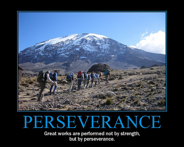 Perseverance - Great works are performed not by strength but by perseverance