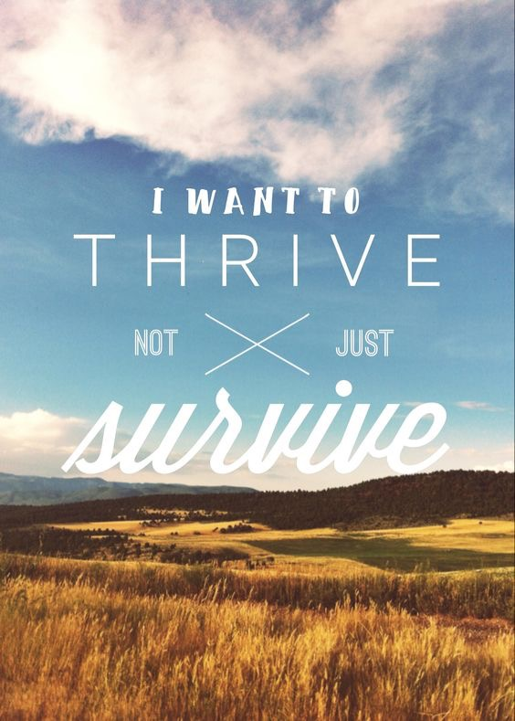 We were created to be more than survivors but rather be thrivers through Jesus!