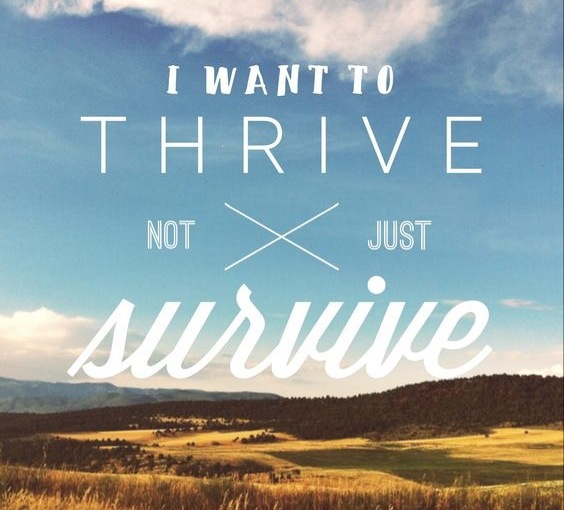 We were created to be more than survivors but rather be thrivers throughJesus!
