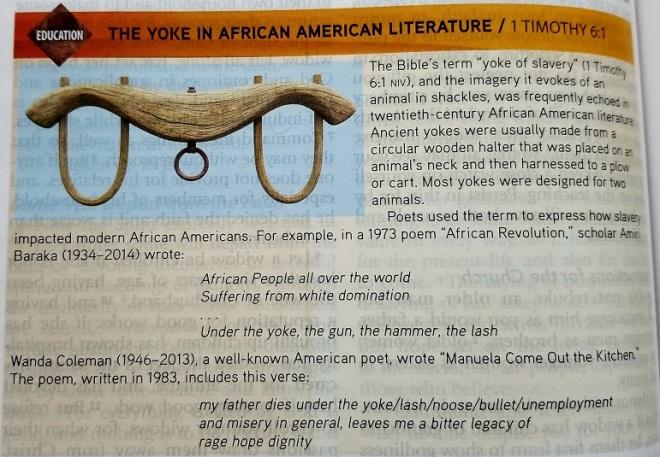Feb 26 - 1 Timoth 6_1 - The Yoke in African American Literature - Global Impact Bible