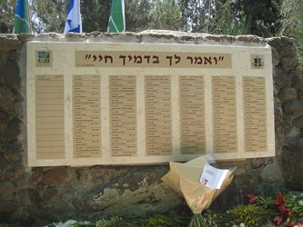 SOUTH AFRICANS IN THE ISRAELI ARMY…(The Bible's Impact on Trade and Taxes [June 18])