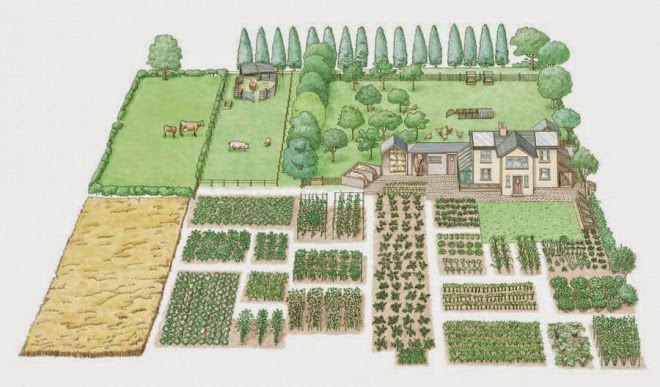 CROP ROTATION…(The Bible's Impact on Scientific Discovery [July6])