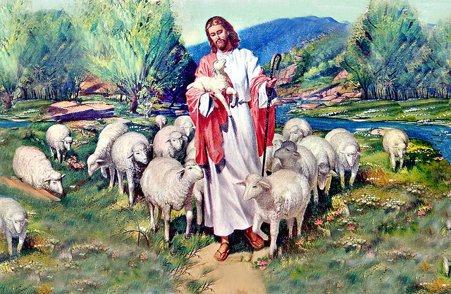 What makes a good shepherd?