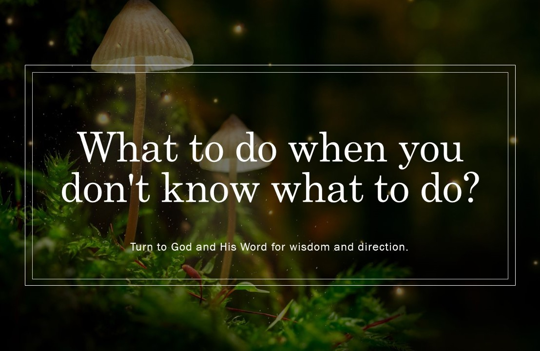 What to do when you don't know what to do? Turn to God and His Word for wisdom and direction.