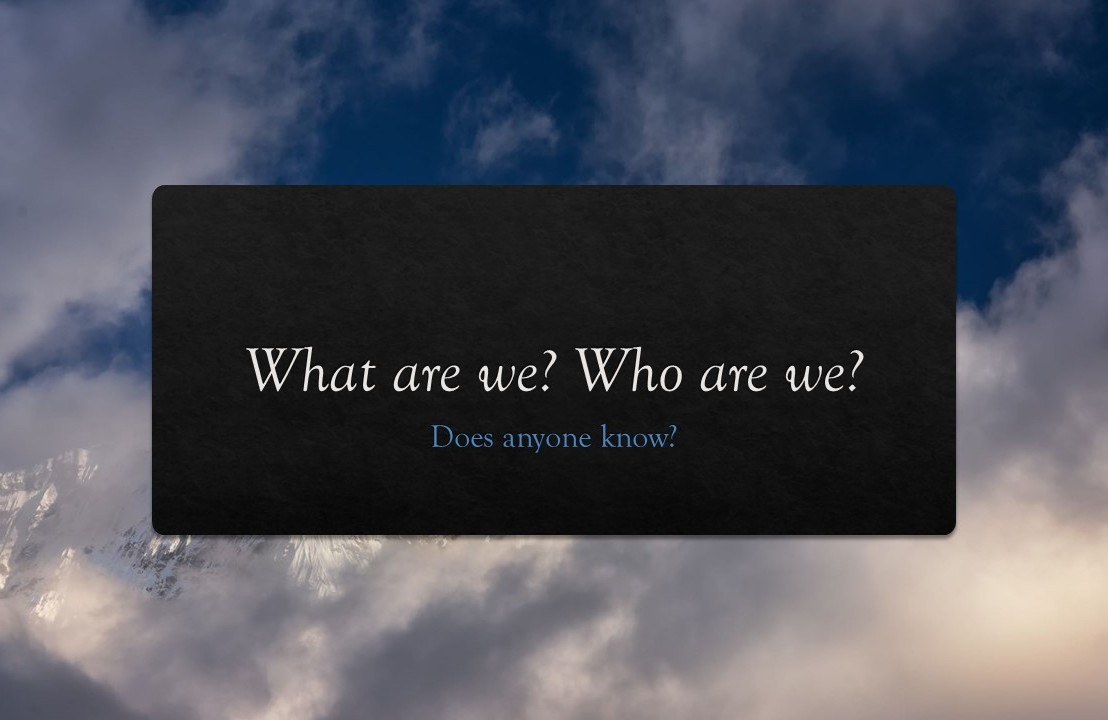 What are we? Who are we? Does anyone know?